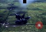 Image of open field Vietnam, 1967, second 11 stock footage video 65675051863