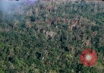 Image of wooded low land Vietnam, 1967, second 9 stock footage video 65675051866