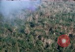 Image of wooded low land Vietnam, 1967, second 12 stock footage video 65675051866