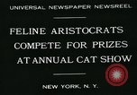 Image of cats New York City USA, 1931, second 4 stock footage video 65675051980