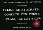 Image of cats New York City USA, 1931, second 6 stock footage video 65675051980