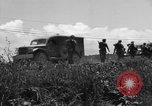Image of L-5B planes Okinawa Ryukyu Islands, 1945, second 4 stock footage video 65675052270