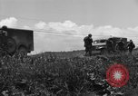 Image of L-5B planes Okinawa Ryukyu Islands, 1945, second 6 stock footage video 65675052270