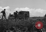 Image of L-5B planes Okinawa Ryukyu Islands, 1945, second 10 stock footage video 65675052270