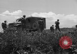 Image of L-5B planes Okinawa Ryukyu Islands, 1945, second 11 stock footage video 65675052270