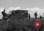Image of L-5B planes Okinawa Ryukyu Islands, 1945, second 12 stock footage video 65675052270