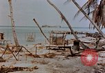 Image of Marines Tarawa Gilbert Islands, 1943, second 7 stock footage video 65675052291