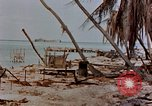 Image of Marines Tarawa Gilbert Islands, 1943, second 10 stock footage video 65675052291