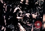Image of United States 25th Infantry Division Vietnam, 1967, second 10 stock footage video 65675052325