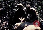 Image of United States 25th Infantry Division Vietnam, 1967, second 10 stock footage video 65675052327
