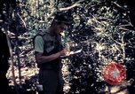 Image of United States troops Vietnam, 1967, second 8 stock footage video 65675052328