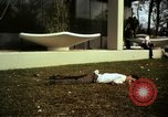 Image of Fallen Vietcong on embassy grounds Saigon Vietnam, 1968, second 7 stock footage video 65675052350