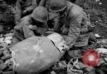 Image of Japanese-American 442nd Infantry Vosges Mountains France, 1944, second 5 stock footage video 65675052439