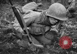 Image of Japanese-American 442nd Infantry Vosges Mountains France, 1944, second 8 stock footage video 65675052439