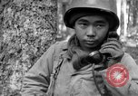 Image of Japanese-American 442nd Infantry Vosges Mountains France, 1944, second 11 stock footage video 65675052439