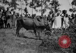 Image of native people Uganda, 1924, second 8 stock footage video 65675052481