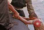 Image of US submarine rescues survivors from Japanese boat Pacific Ocean, 1945, second 9 stock footage video 65675052640