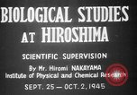 Image of plants and vegetation Hiroshima Japan, 1945, second 3 stock footage video 65675052705