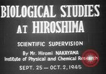 Image of plants and vegetation Hiroshima Japan, 1945, second 5 stock footage video 65675052705