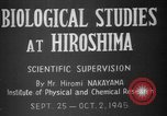Image of plants and vegetation Hiroshima Japan, 1945, second 10 stock footage video 65675052705