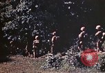 Image of US Marines Okinawa Ryukyu Islands, 1945, second 2 stock footage video 65675052759