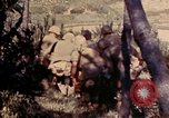 Image of 1st and 2nd Marine Battalions Okinawa Ryukyu Islands, 1945, second 9 stock footage video 65675052760