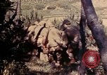 Image of 1st and 2nd Marine Battalions Okinawa Ryukyu Islands, 1945, second 11 stock footage video 65675052760
