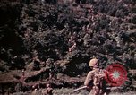 Image of 1st and 2nd Marine Battalions Okinawa Ryukyu Islands, 1945, second 4 stock footage video 65675052761
