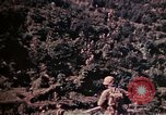 Image of 1st and 2nd Marine Battalions Okinawa Ryukyu Islands, 1945, second 6 stock footage video 65675052761