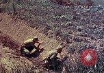 Image of Marines Okinawa Ryukyu Islands, 1945, second 7 stock footage video 65675052787