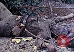 Image of dead bodies of Japanese soldiers Okinawa Ryukyu Islands, 1945, second 2 stock footage video 65675052819