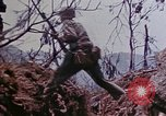 Image of 6th Marine Division 4th Marines Okinawa Ryukyu Islands, 1945, second 5 stock footage video 65675052840