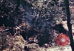 Image of 1st Battalion 4th Marines Okinawa Ryukyu Islands, 1945, second 11 stock footage video 65675052864