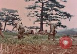 Image of 1st Marine Regiment Naha Okinawa Ryukyu Islands, 1945, second 6 stock footage video 65675052913