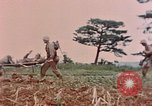 Image of 1st Marine Regiment Naha Okinawa Ryukyu Islands, 1945, second 9 stock footage video 65675052913