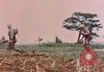 Image of 1st Marine Regiment Naha Okinawa Ryukyu Islands, 1945, second 10 stock footage video 65675052913