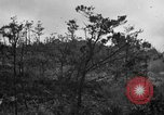 Image of 7th Marine Division Okinawa Ryukyu Islands, 1945, second 1 stock footage video 65675052921