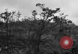Image of 7th Marine Division Okinawa Ryukyu Islands, 1945, second 2 stock footage video 65675052921