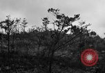 Image of 7th Marine Division Okinawa Ryukyu Islands, 1945, second 6 stock footage video 65675052921