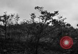 Image of 7th Marine Division Okinawa Ryukyu Islands, 1945, second 7 stock footage video 65675052921