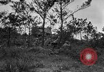 Image of United States troops Okinawa Ryukyu Islands, 1945, second 8 stock footage video 65675052940