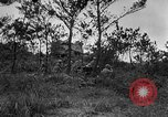 Image of United States troops Okinawa Ryukyu Islands, 1945, second 9 stock footage video 65675052940