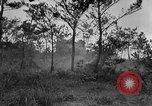 Image of United States troops Okinawa Ryukyu Islands, 1945, second 11 stock footage video 65675052940