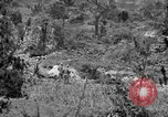 Image of United States soldiers Okinawa Ryukyu Islands, 1945, second 12 stock footage video 65675052960