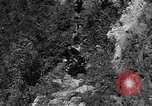 Image of 32nd Infantry 7th Division Okinawa Ryukyu Islands, 1945, second 9 stock footage video 65675052969