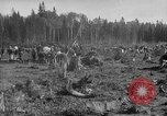 Image of Russians Archangel Russia, 1918, second 9 stock footage video 65675053040