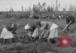 Image of Russians Archangel Russia, 1918, second 12 stock footage video 65675053040