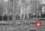 Image of American 339th Infantry Regiment Archangel Russia, 1918, second 12 stock footage video 65675053049