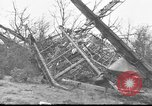 Image of wreckage of planes Petersfield Hampshire United Kingdom, 1936, second 6 stock footage video 65675053127