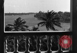 Image of Duke and Duchess of Windsor Miami Florida USA, 1940, second 12 stock footage video 65675053150
